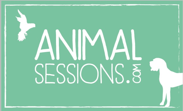 Animal sessions